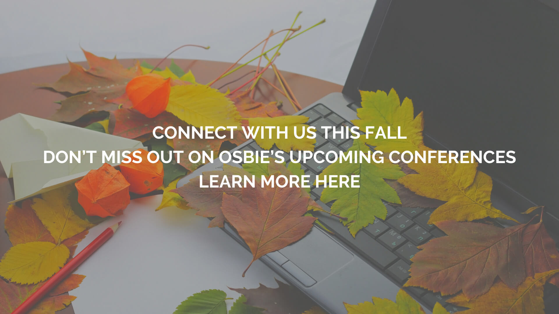 osbie-fall-connect-3